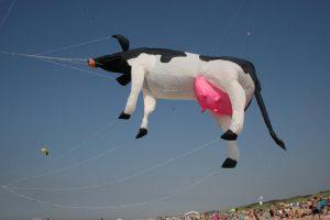 "Frühjahrs-Drachenfliegerfestival Cadzand-Bad @ Strandpavillon ""Caricole"" Cadzand-Bad | Cadzand | Zeeland | Niederlande"