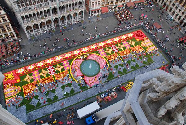 Brüssel_Flowercarpet_2010_10