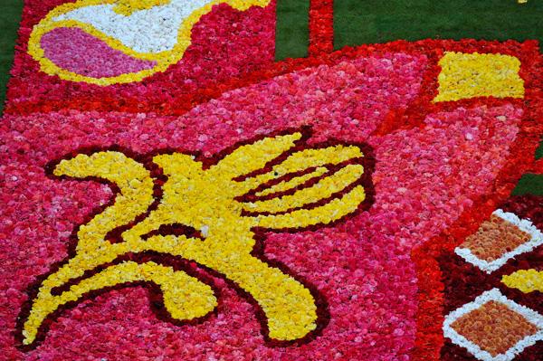 Brüssel_Flowercarpet_2010_18
