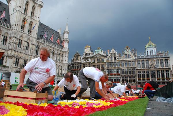 Brüssel_Flowercarpet_2010_9
