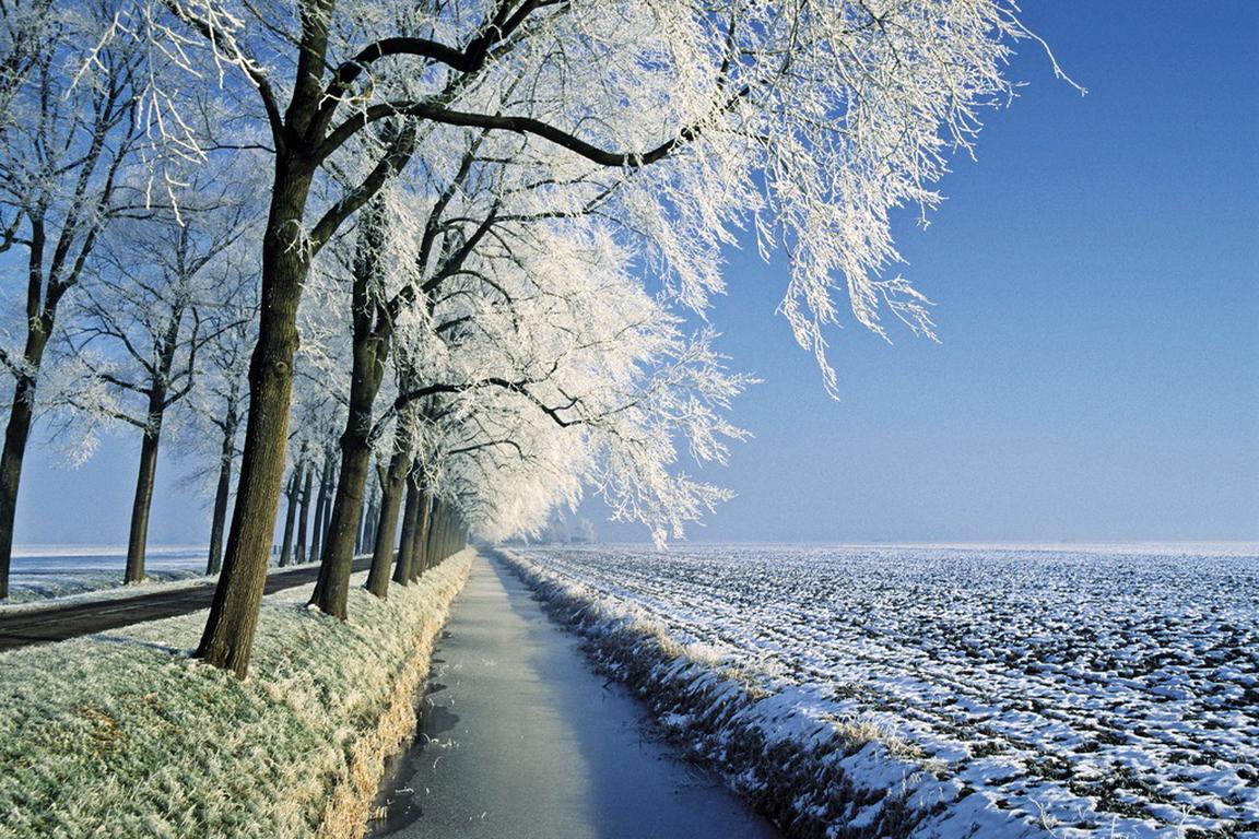 Winterlandschaft in Seeländisch-Flandern